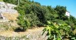 dolcedo-ferienwohnung-s-gartenblick76994BD5-B4CD-E913-14B4-CA207B6BD3B1.jpg