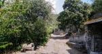 dolcedo-ferienwohnung-v-zufahrt3BE61C4D-0EFD-4190-45E7-D99A3D7F9D9C.jpg